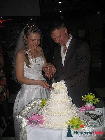 свадебный тортик - фото 105034 Olga***