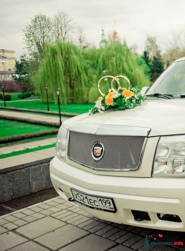 Фото 114038 в коллекции Wedding