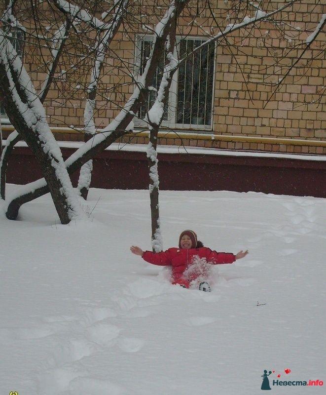 Фото 91419 в коллекции моя доча моя жизнь   - Полька Высокоблагородие
