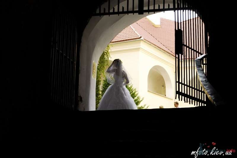 Свадебные фотографии - фото 45578 6091987