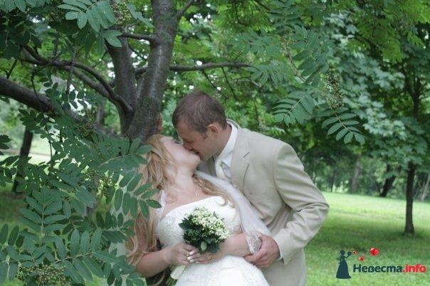 Фото 120187 в коллекции Мы тоже были невестами! - Ведущая Власова Дарья