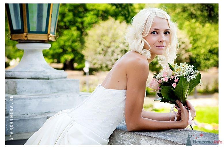 Фото 69564 в коллекции Свадьбы  2009-2011гг...