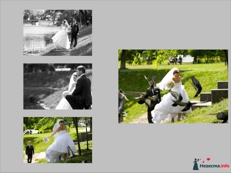 Фото 91187 в коллекции Свадебное фото - Фотограф Максим Корогодский