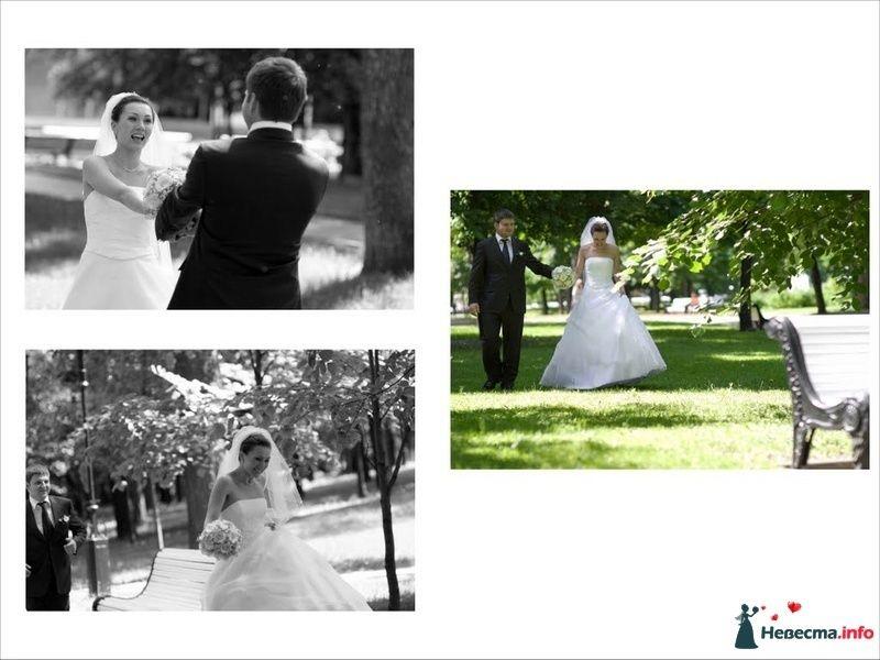 Фото 91192 в коллекции Свадебное фото - Фотограф Максим Корогодский