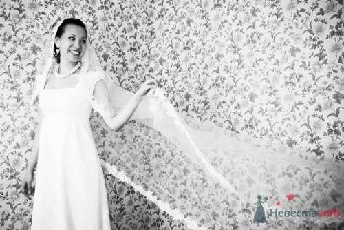 Фото 5637 в коллекции Наши фотографы - Невеста01