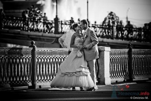 Фото 5698 в коллекции Наши фотографы - Невеста01