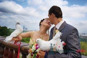 002 - фото 3041 Невеста01