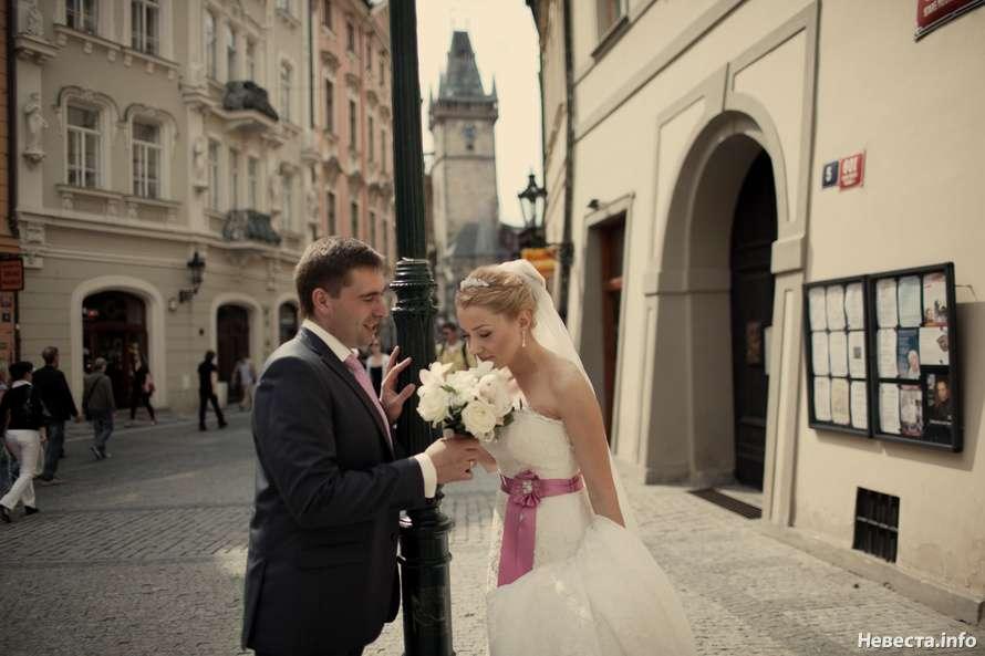 Фото 630737 в коллекции Viva La Vida - Конкурс фото «Свадьба моей мечты» - Nevesta.info - модератор