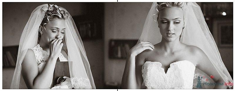 Фото 46504 в коллекции Мои фотографии - Фотограф Юлия Камран