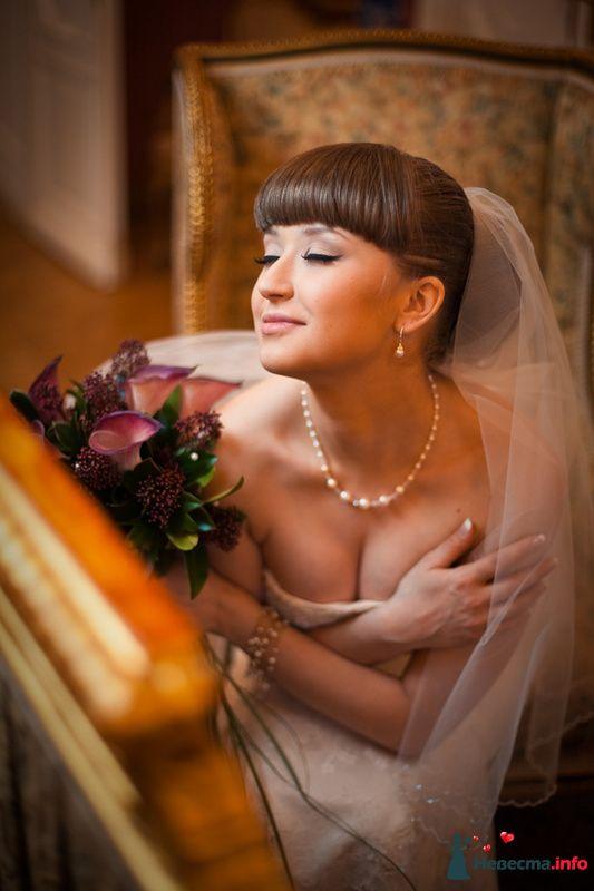 Фото 83125 в коллекции ЛИЧНОЕ - Фотограф Александра Глотова