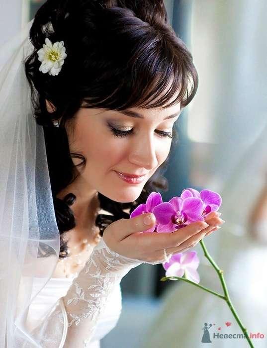 Фото 47233 в коллекции Свадебные фотографии - Невеста01