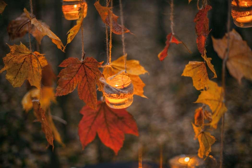 Фото 16582644 в коллекции Жаркая Осень - Wed Magic - студия декора и флористики