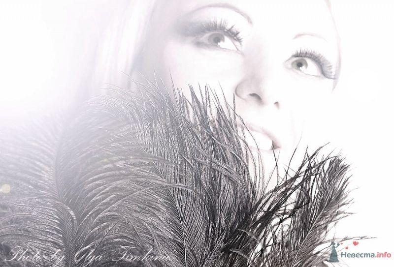 Фото 45640 в коллекции Пролюбовь - OlgaTimkina