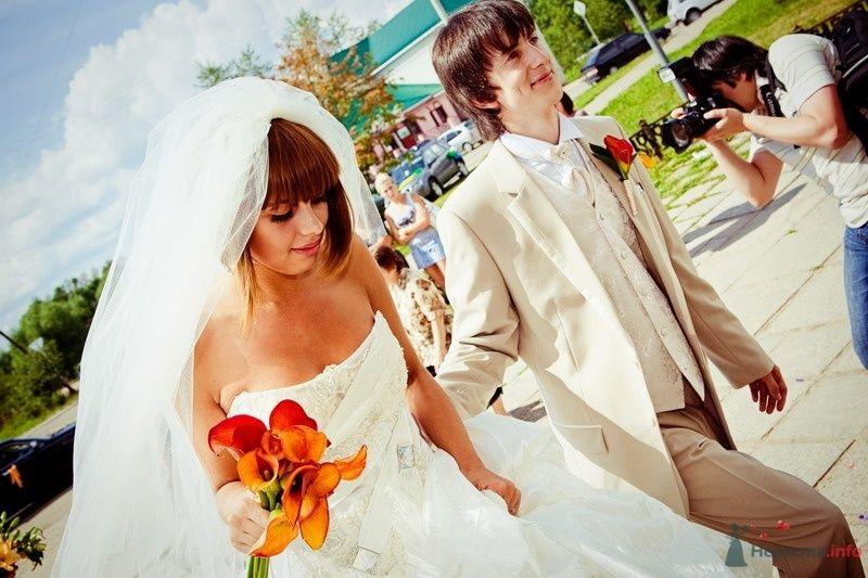 Фото 61779 в коллекции Моя оранжевая свадьба - yanechka