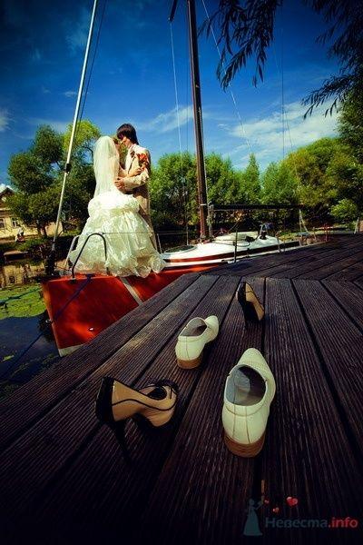 Фото 61916 в коллекции Моя оранжевая свадьба - yanechka