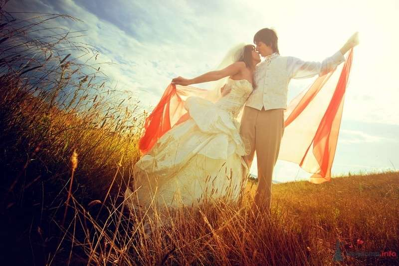 Фото 62143 в коллекции Моя оранжевая свадьба - yanechka
