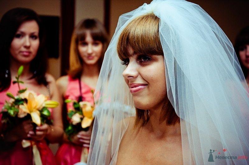 Фото 62491 в коллекции Моя оранжевая свадьба - yanechka