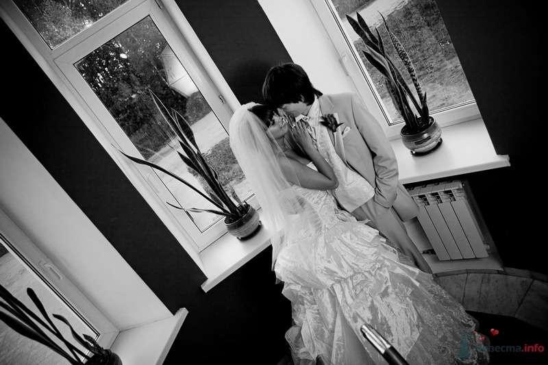 Фото 62747 в коллекции Моя оранжевая свадьба - yanechka