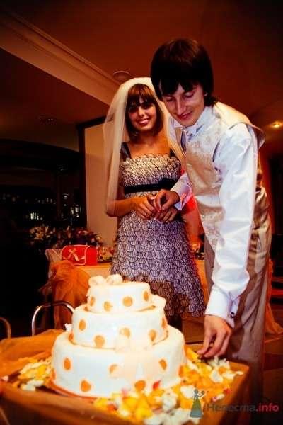 Фото 62789 в коллекции Моя оранжевая свадьба - yanechka