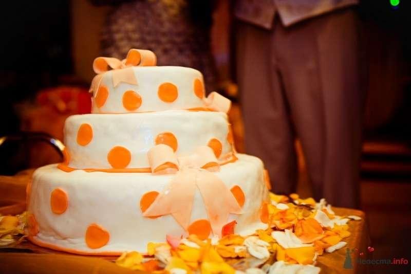Фото 62792 в коллекции Моя оранжевая свадьба - yanechka