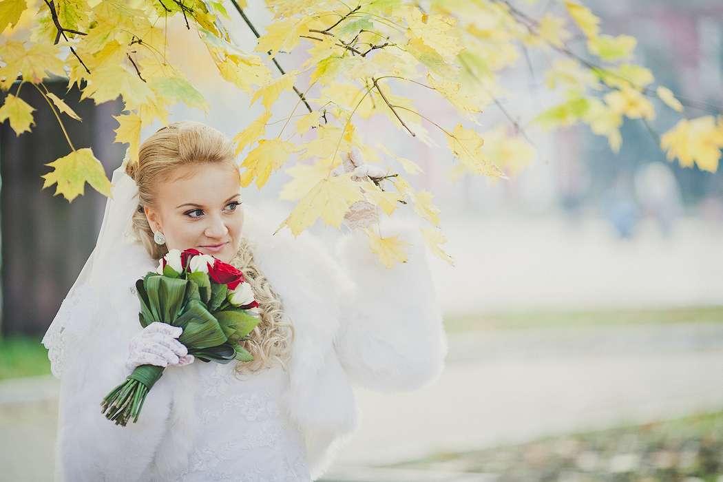 Фото 818565 в коллекции Мои фотографии - Vitaly Nikolenko - фотограф