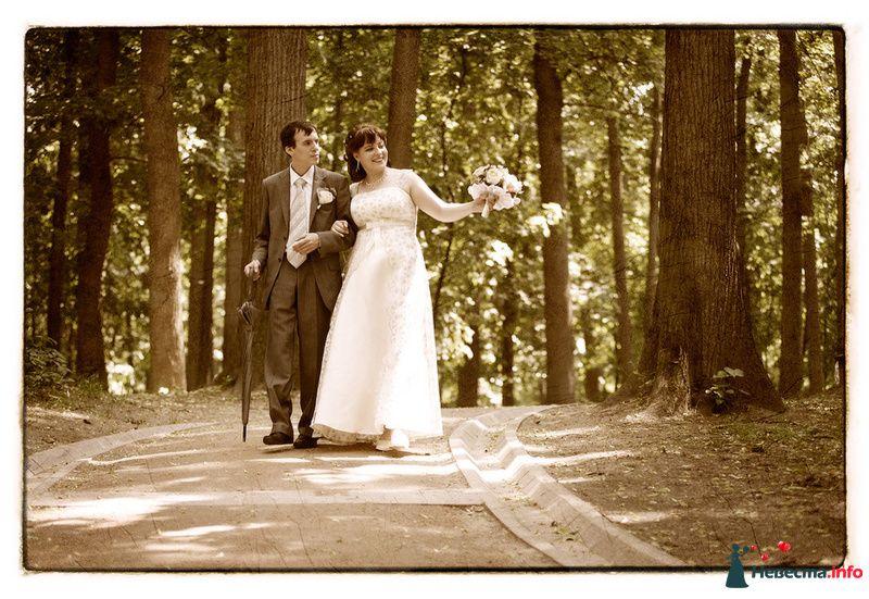 Свадьба Яны и Алексея - фото 91502 Фотографы Тили и Гев