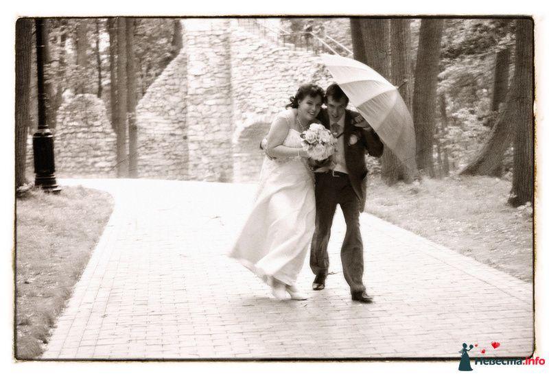 Свадьба Яны и Алексея - фото 91510 Фотографы Тили и Гев