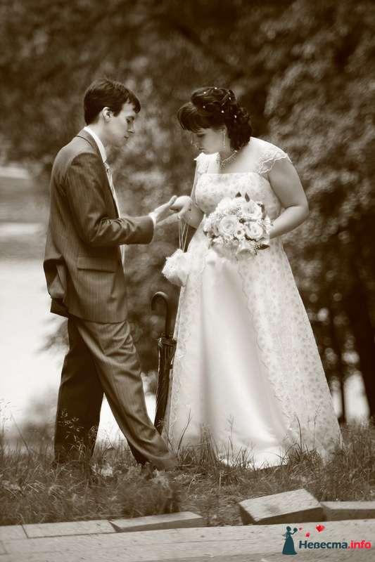 Свадьба Яны и Алексея - фото 91530 Фотографы Тили и Гев