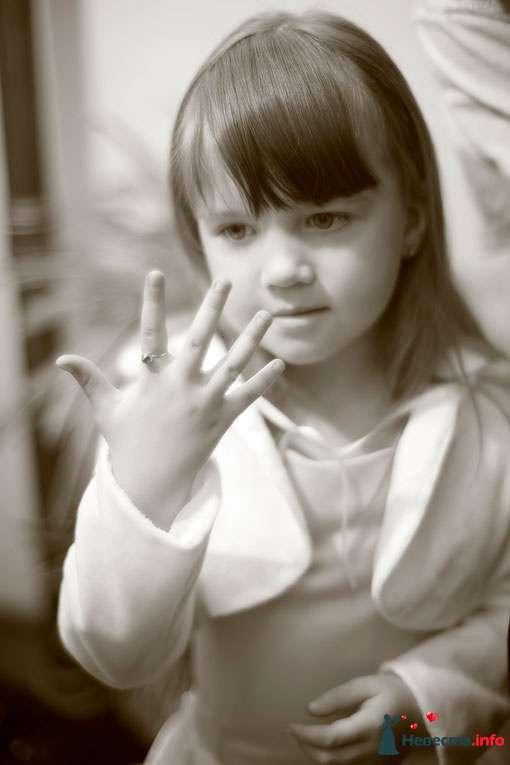 Фото 91612 в коллекции Инна и Миша - Фотографы Тили и Гев