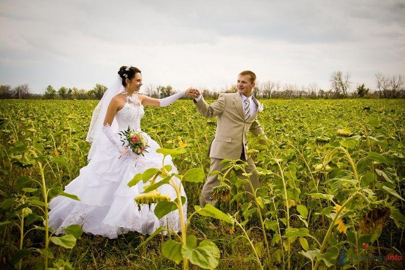 Жених и невеста, взявшись за руки, идет по полю  - фото 54986 ВаленТинка:)