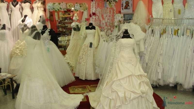 Фото 47053 в коллекции центр  свадебной  моды  BELLISSIMA - Bellissi