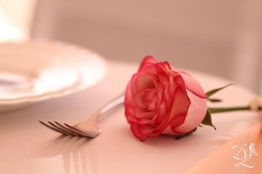 Фото 1354555 в коллекции Свадьба в персиковом цвете - Love Decor - свадебный декор