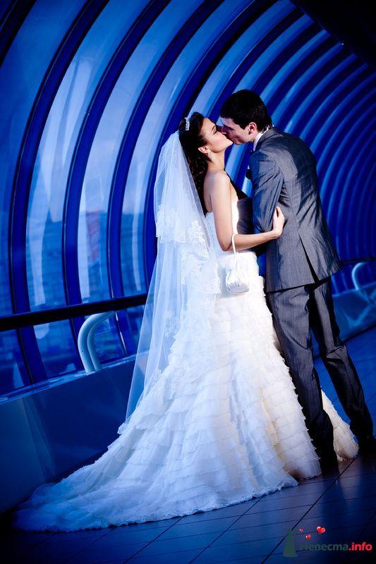 Мост Багратион - фото 112487 Свадебный фотограф Алексей Константинов