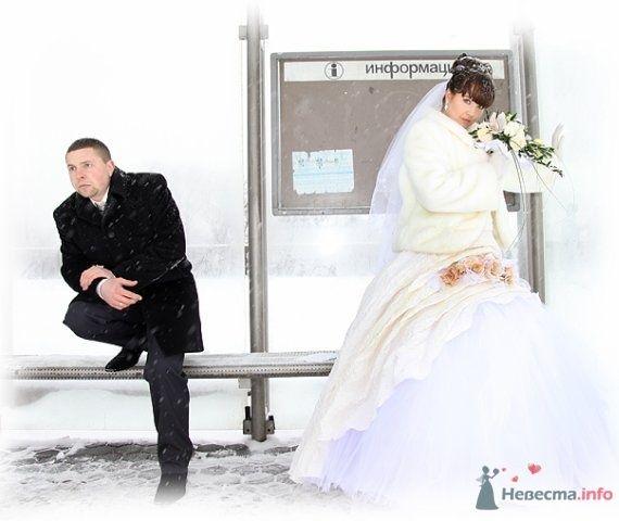 Фото 62205 в коллекции Как Кошка замуж выходила 08.01.2010 - Koshka_Lu