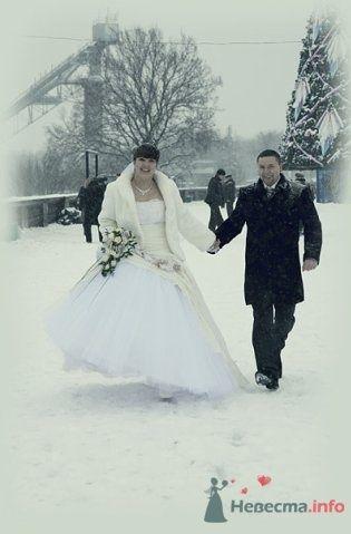 Фото 62206 в коллекции Как Кошка замуж выходила 08.01.2010