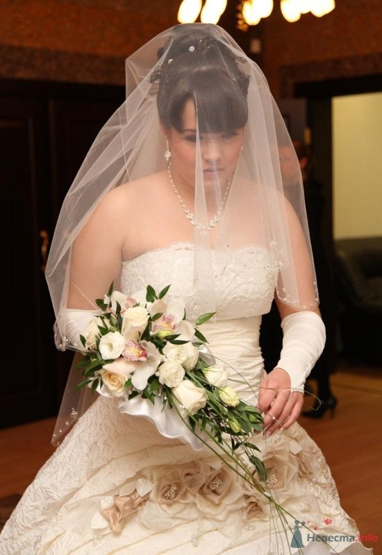 Фото 68365 в коллекции Как Кошка замуж выходила 08.01.2010 - Koshka_Lu