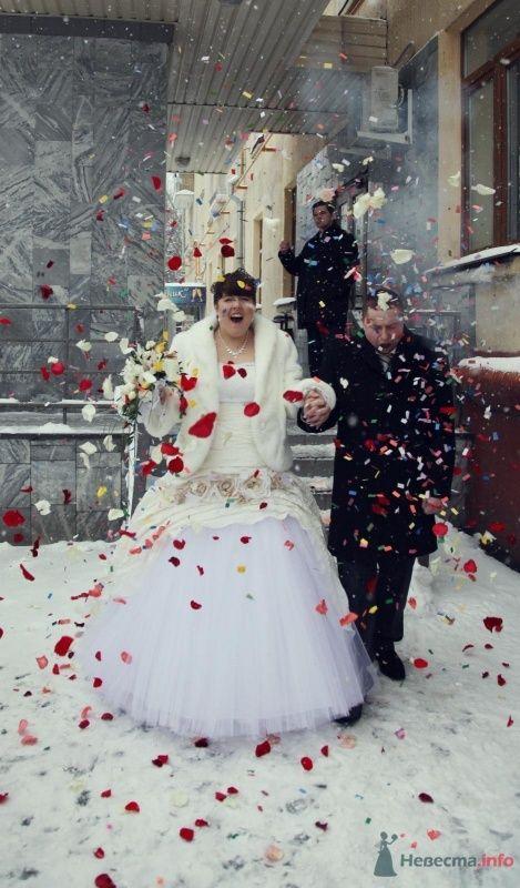 Фото 68393 в коллекции Как Кошка замуж выходила 08.01.2010