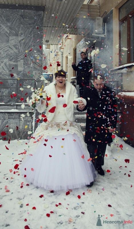 Фото 68393 в коллекции Как Кошка замуж выходила 08.01.2010 - Koshka_Lu