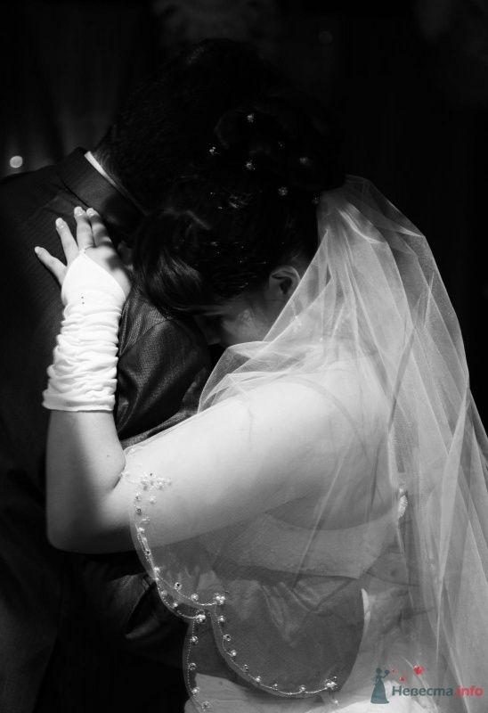 Фото 68883 в коллекции Как Кошка замуж выходила 08.01.2010