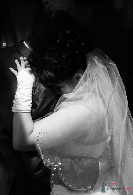 Фото 68883 в коллекции Как Кошка замуж выходила 08.01.2010 - Koshka_Lu