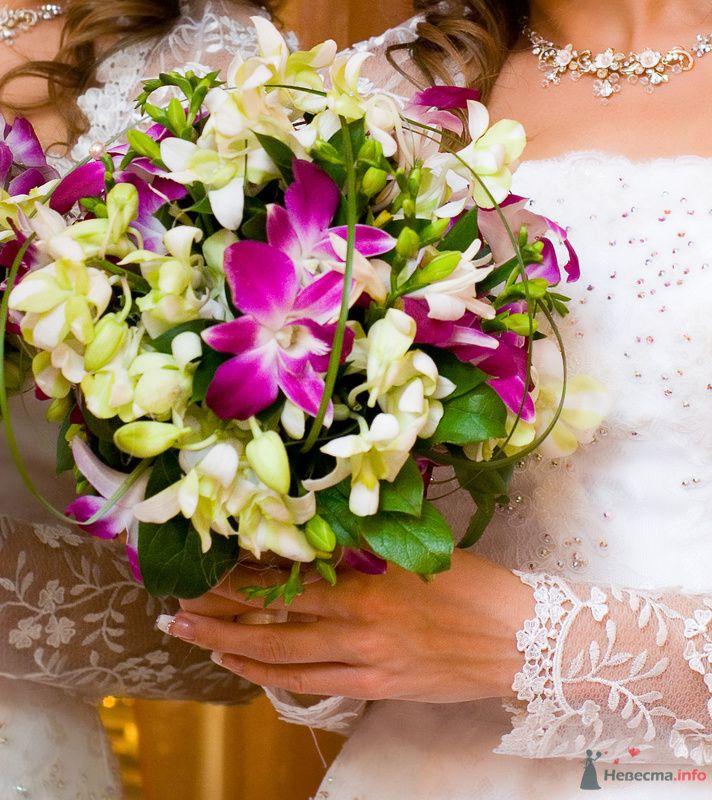 Круглый букет невесты из розовых орхидей и белых фрезий, декорированный зеленью и зеленым берграссом  - фото 73322 eDeLvEyS