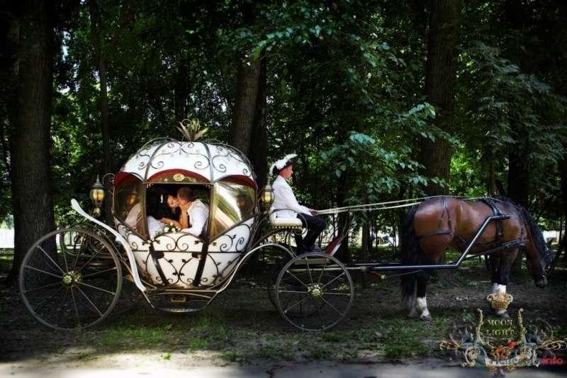 Фото 64374 в коллекции Мои фотографии - Елена Большакова