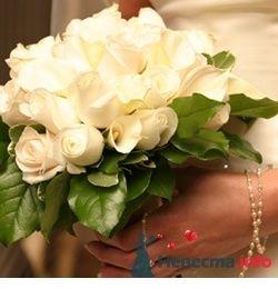 Фото 53849 в коллекции букет - Свадебный распорядитель Ольга Фокс