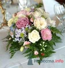 Фото 55215 в коллекции мои фотографии - Свадебный распорядитель Ольга Фокс