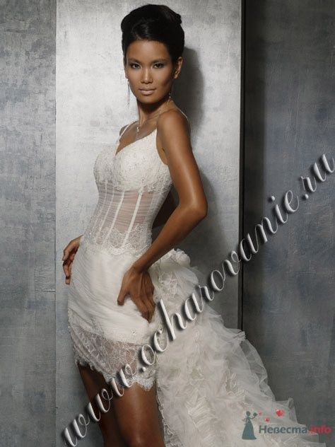 Фото 56263 в коллекции мои фотографии - Свадебный распорядитель Ольга Фокс