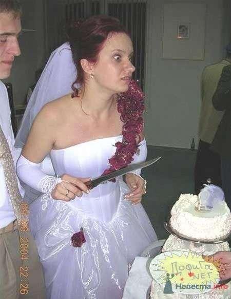 Фото 57210 в коллекции мои фотографии - Свадебный распорядитель Ольга Фокс