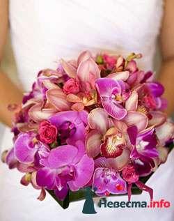 Фото 111949 в коллекции мои фотографии - Свадебный распорядитель Ольга Фокс
