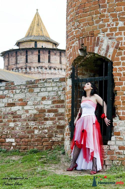 Фото 105932 в коллекции Свадебные - Петрова Виления, свадебный фотограф