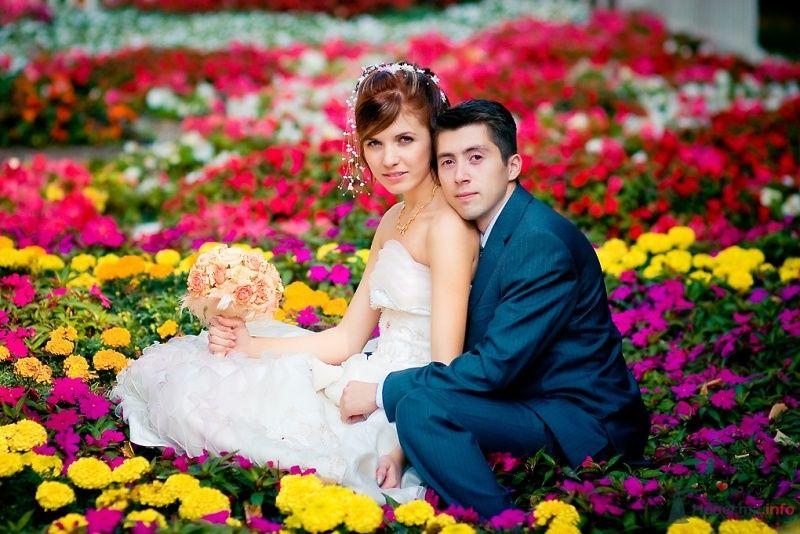 Жених и невеста сидят, прислонившись друг к другу, в цветочной клумбе