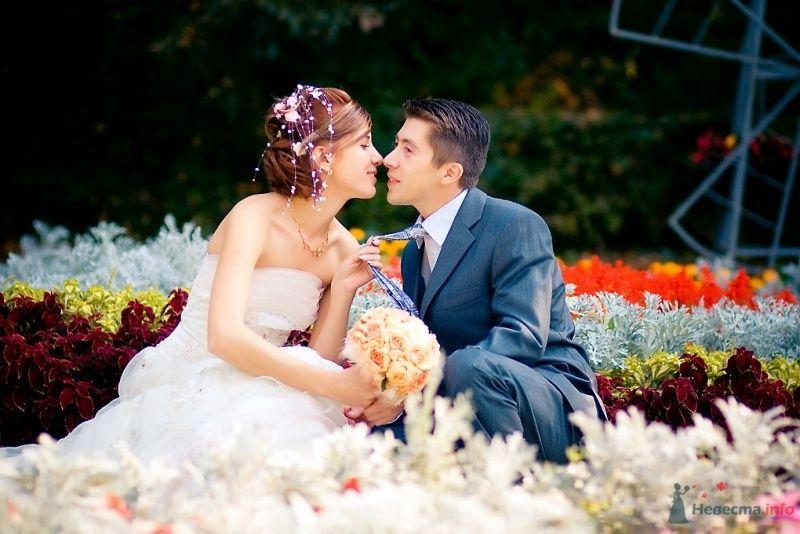 Фото 51693 в коллекции Свадьба Александра и Ольги